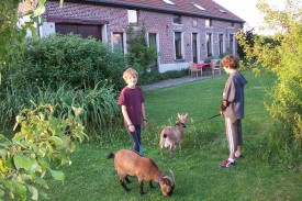 Vakantieverblijf Hageland